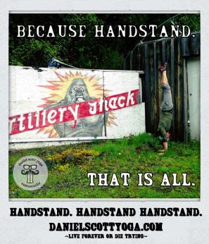 DSY_handstand_handstand_handstand