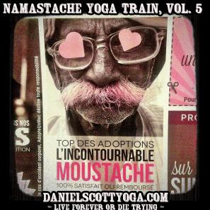 DSY-namastache-yoga-train-vol-5
