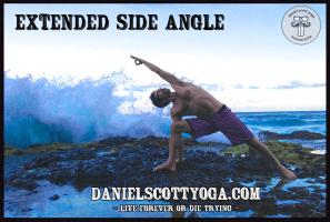 DSY-extende-side-angle-yoga-step